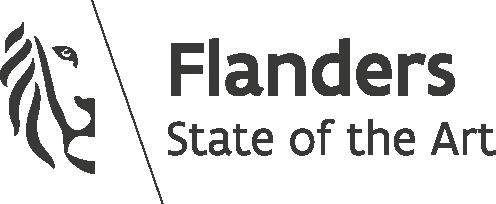 Flemish government